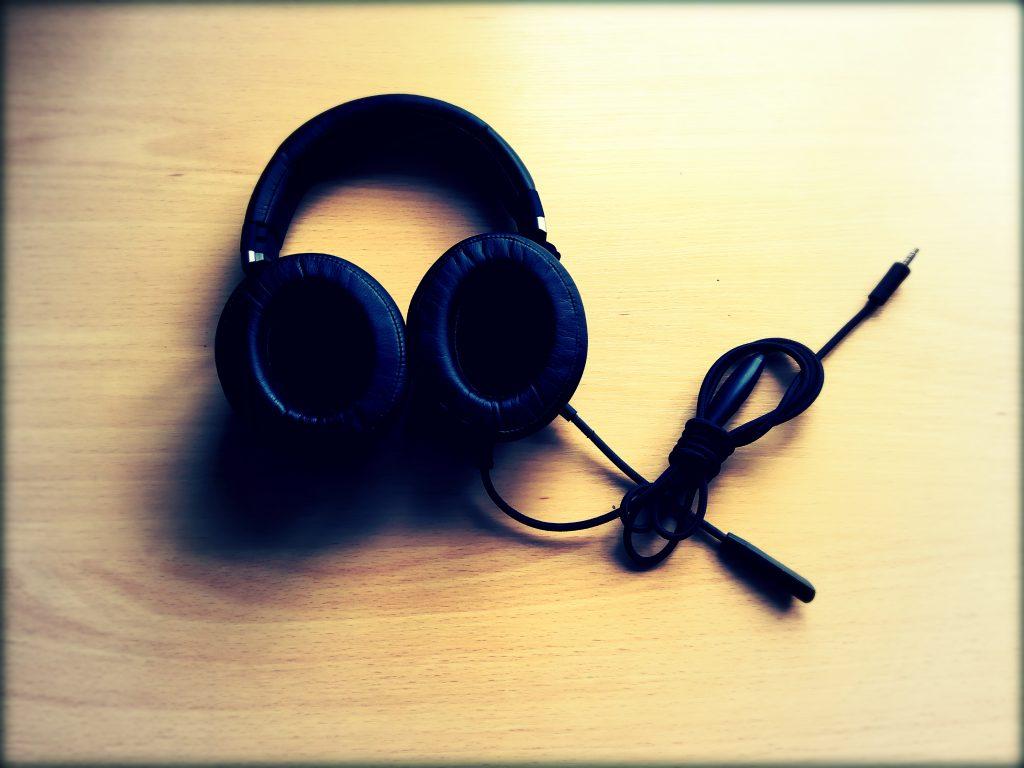 ausinių meistras 1